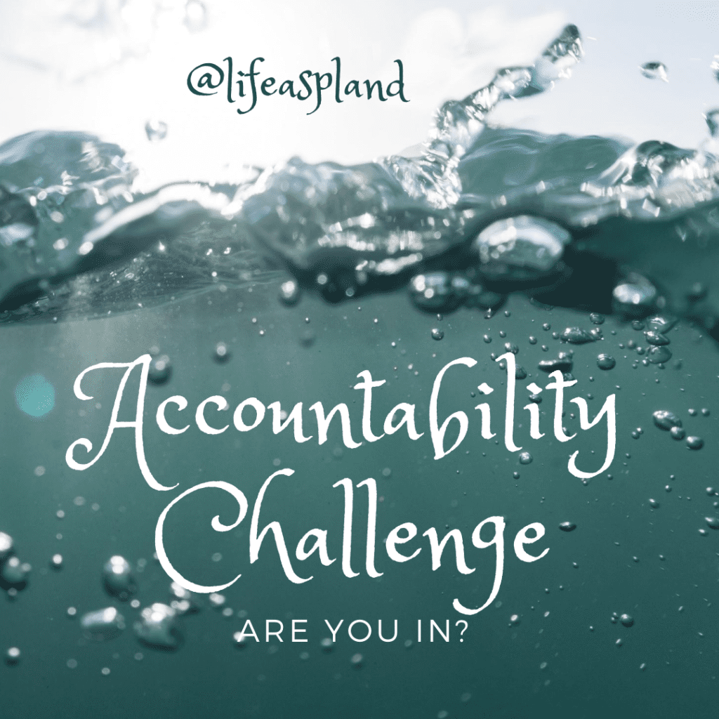 Accountability Challenge - are you in?