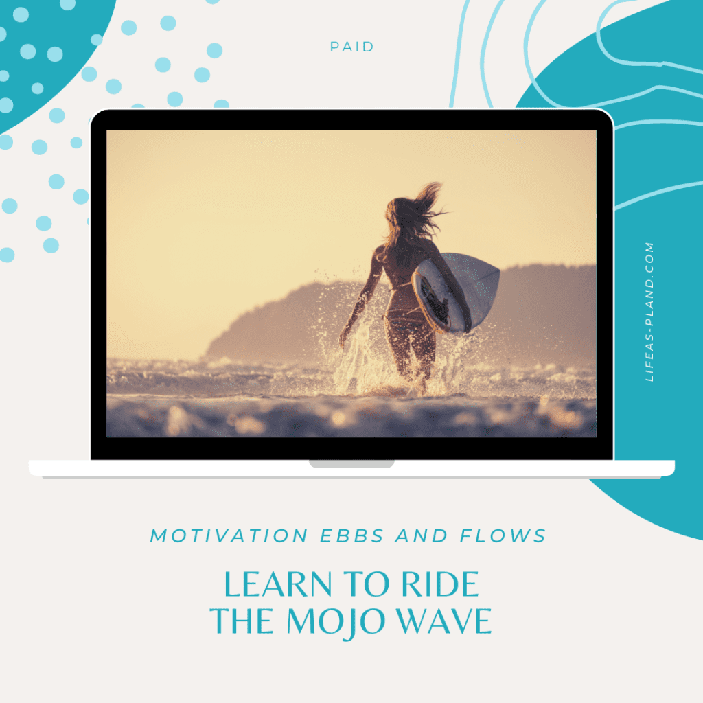 Computer screen showing image of woman walking out to sea with surf board
